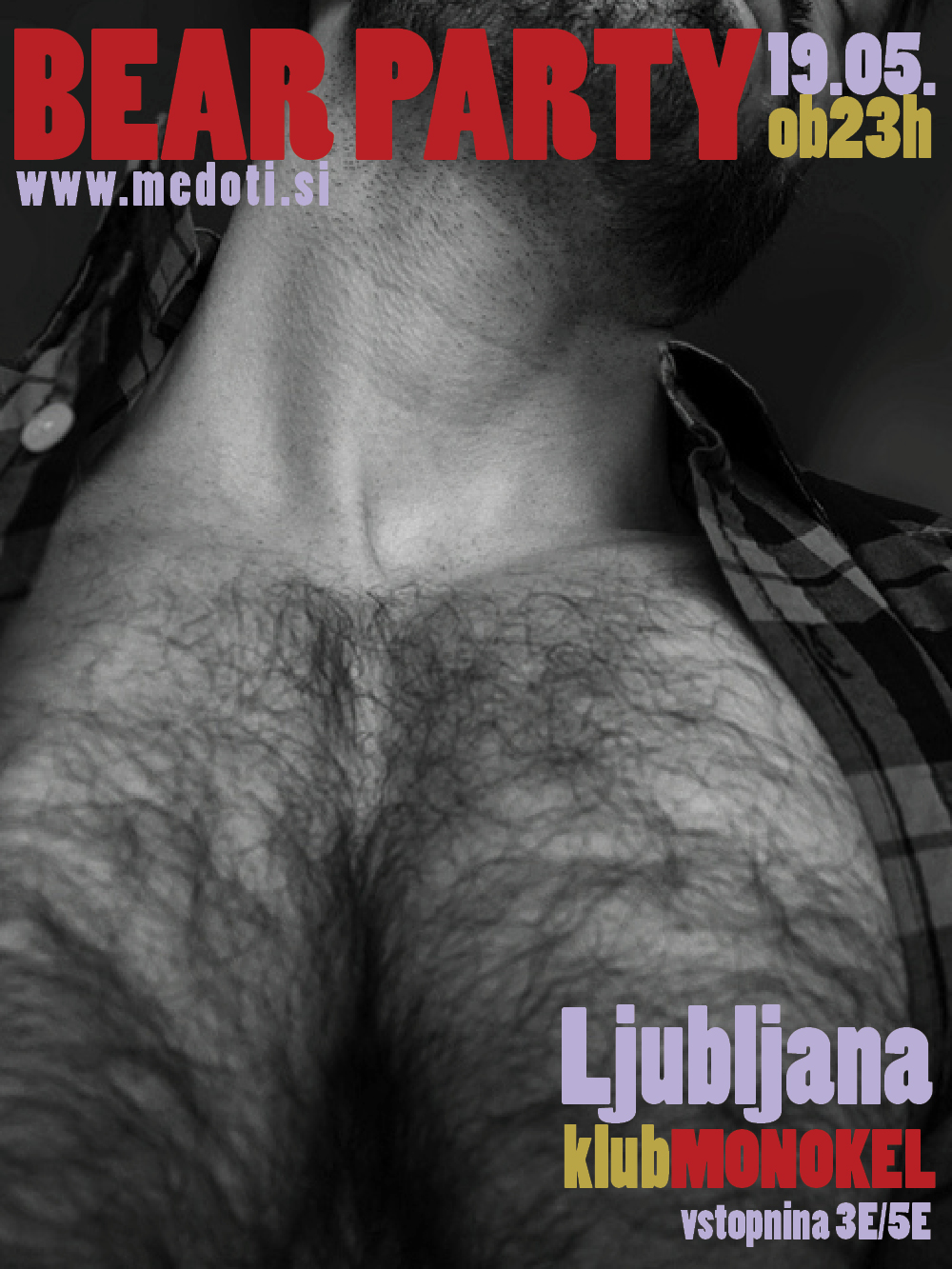 bear_party_20120519